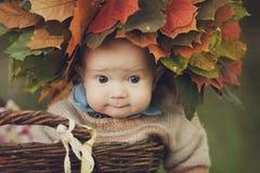 Słodki mały dziecko z dużymi oczami i kolorowy jesień wianek robić liście klonowi na jego przewodzimy, siedzimy w łozinowym koszu zdjęcie stock