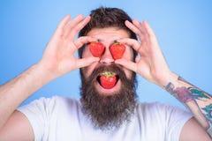 słodki pokusy Mężczyzna w miłości z truskawką Modniś z brodą je truskawki i chwyta jagody jako eyeglasses Zdjęcie Stock
