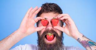słodki pokusy Mężczyzna w miłości z truskawką Modniś z brodą je truskawki i chwyta jagody jako eyeglasses człowieku Obraz Royalty Free