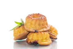Słodki słodka bułeczka curd w cukieru proszku odizolowywającym na bielu Zdjęcie Royalty Free