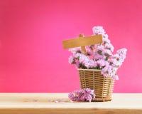 Słodki statice kwiat w koszu z pustą drewnianą etykietką na czerwieni pi Fotografia Royalty Free