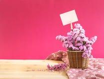 Słodki statice kwiat w koszu z pustego papieru etykietką na czerwieni szpilce Zdjęcie Royalty Free
