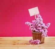 Słodki statice kwiat w koszu z pustego papieru etykietką na czerwieni szpilce Zdjęcia Stock