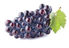 Słodki winogrono z liściem Zdjęcia Royalty Free