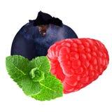 Słodkie jagody z miętówką odizolowywającą na bielu Zdjęcie Stock