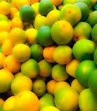Słodkie pomarańcze fotografia stock