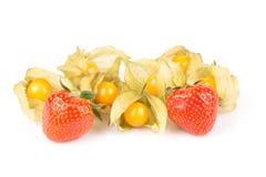 Słodkie truskawki z zielonymi liśćmi i żółtymi złotymi physalios Obrazy Royalty Free