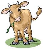 słodkie uśmiechasz kreskówek krowy styl Fotografia Stock