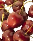 Słodkie wiśnie jako tło Zdjęcia Stock