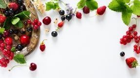 Słodkiego lata soku owoc świeży tło; lata jedzenie Obraz Stock