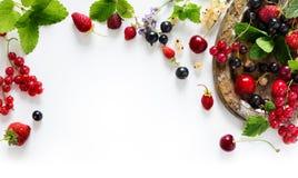 Słodkiego lata soku owoc świeży tło; lata jedzenie Zdjęcia Royalty Free