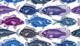 Słodkowodnej wektor ryba niekończący się wzór, sztuki natura i żołnierza piechoty morskiej th, royalty ilustracja
