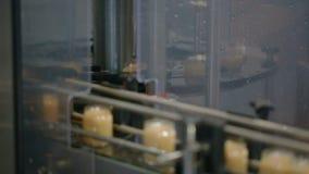 Słoje ruszają się szerokiego konwejeru pasek przy fabryką Wideo z dźwiękiem zdjęcie wideo