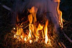 Słoma suchy ogień Zdjęcia Stock