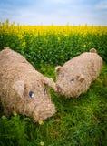 Słomiana świnia Zdjęcie Royalty Free