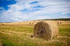 Słomiani Haystacks Zdjęcie Royalty Free