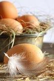 słomiani zbliżeń jajka obraz stock