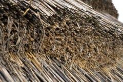 Słomiany pokrywa strzechą zbliżenie Obraz Stock