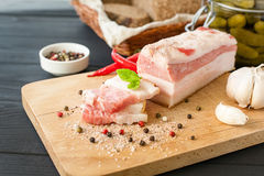 Słona spiced okrasa, Ukraińska kuchnia zdjęcia stock