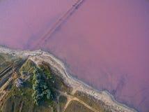 Słone jezioro z nabrzeżnymi solankowymi bagnami, widok z lotu ptaka Zdjęcie Royalty Free