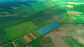 Słoneczne baterie wśród szerokiego przydziały Komarnica widokiem z lotu ptaka 4K zbiory wideo