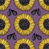 Słonecznik Wektorowy bezszwowy wzór z kwiatami na fiołkowym tle tła dekoracyjny projekta ilustraci opakowanie ilustracji