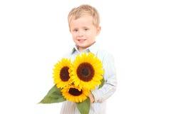 słoneczniki, zdjęcia stock