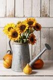 Słoneczniki w podlewanie puszce i kolorowych baniach na drewnianej zakładce zdjęcie stock