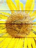 Słonecznikowy kierowy kształt na Drewnianej teksturze Fotografia Stock