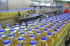 Słonecznikowy olej zdjęcia royalty free