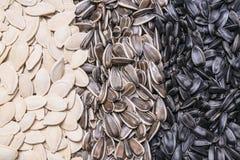 Słonecznikowych ziaren i dyniowych ziaren tło Obrazy Stock