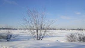 słoneczny dzień końcówki lukrowa rzeka Obraz Stock