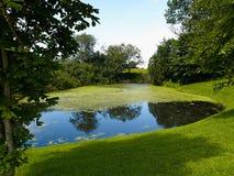 Słoneczny dzień na spokojnym stawowym jeziorze w lecie Obrazy Stock