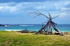 Słoneczny dzień na Żwirowatej plaży Obraz Stock