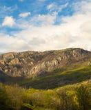 Słoneczny dzień przy stopą góry zakrywać z greenery i lasem zdjęcie stock
