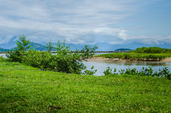 Słoneczny dzień w polu z kryształem - jasna woda Fotografia Stock