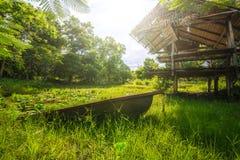 Słoneczny dzień z stawem w lesie fotografia stock