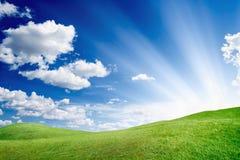 Słoneczny dzień, zieleni pole obraz stock