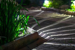 Słoneczny lampionu ogródu światło Obrazy Stock