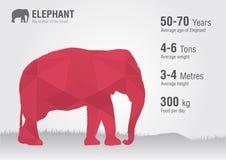 Słonia życia dziki zwierzę z piksla diamentu teksturą Zdjęcia Stock