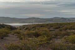 Słonia Butte stanu park w Nowym - Mexico fotografia stock