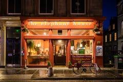 Słonia domu kawiarnia obrazy royalty free