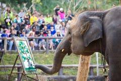 Słonia obraz na papierze w słonia przedstawieniu, Tajlandia Fotografia Stock