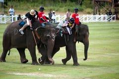 Słonia polo gra. zdjęcie stock