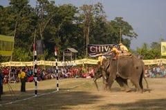 Słonia polo gra przy Thakurdwara, Bardia, Nepal obraz stock