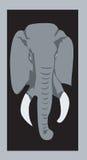 Słonia portret Obraz Stock
