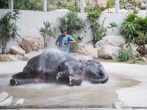 Słonia przedstawienia dzienniczka kąpania prysznic Zdjęcia Stock