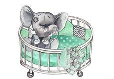Słonie w łóżku polowym Obraz Royalty Free