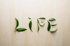 Słowa życia emoci uśmiech robić z liśćmi ruscus kwiat przy drewnianym wieśniak ściany tłem Wciąż życie, eco styl, wierzchołek Zdjęcie Stock