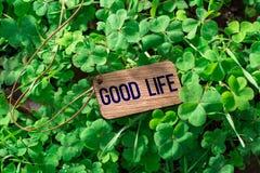 Słowa dobrego życia drewniana etykietka zdjęcia stock